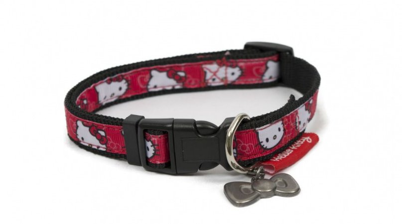 Coleira para cães rostinho estampado Hello Kitty