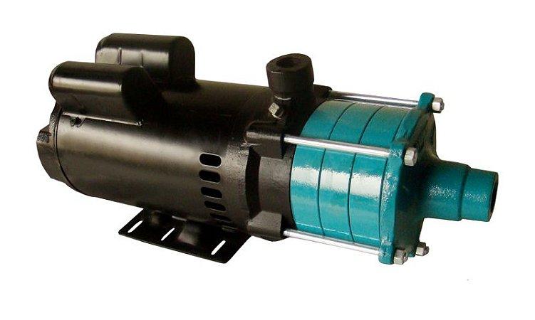 Motobomba Centrífuga Multiestágio Eletroplas ECM-150 1,5CV - 220V  - MONO OU TRIF.
