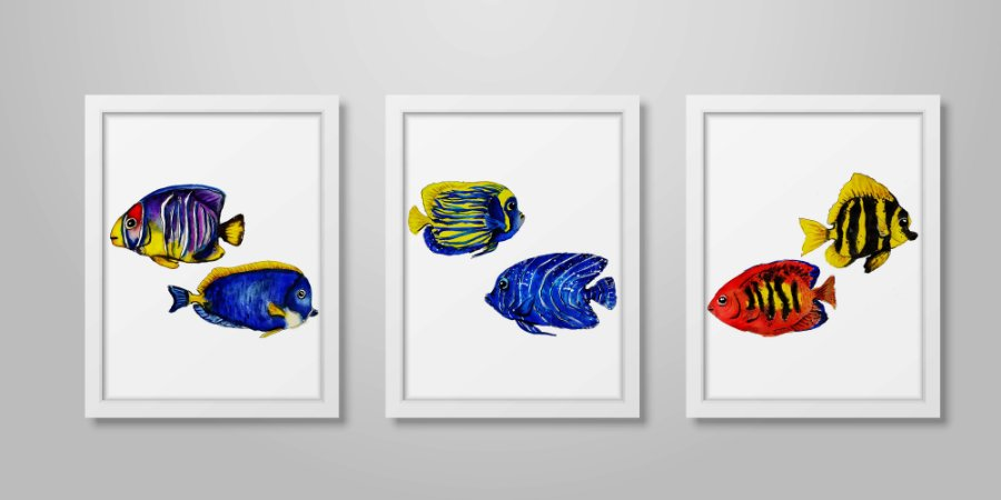 Kit 3 Quadros Decorativos Infantil/Juvenil Peixes Tropicais