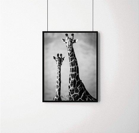 Quadro Decorativo Animais - Girafas em preto e branco.