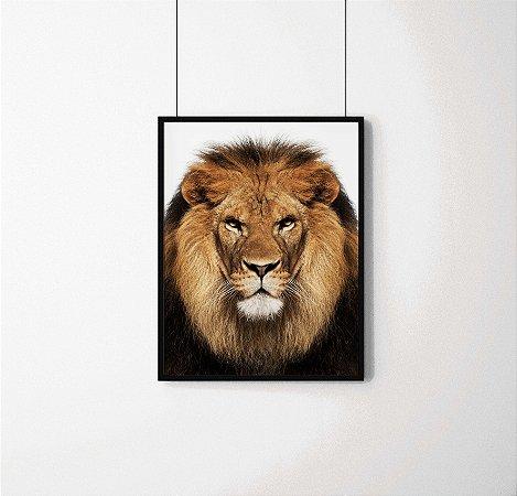 Quadro Decorativo Animais- Lion- The King of jungle.