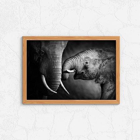 Quadro Decorativo Animais- Elephants