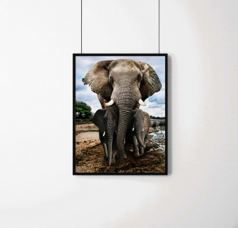 Quadro Decorativo Animais- Elefante com seus filhotes.