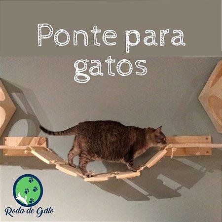 PONTE PARA GATOS