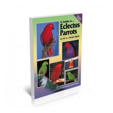 Bird Keeper A Guide to Eclectus Parrots