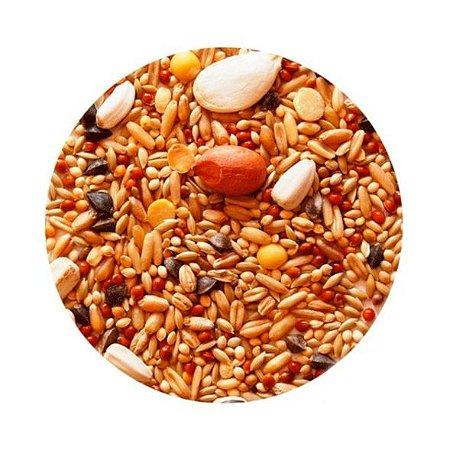 Mistura de Sementes Para Grandes Psitacídeos 1 Kg