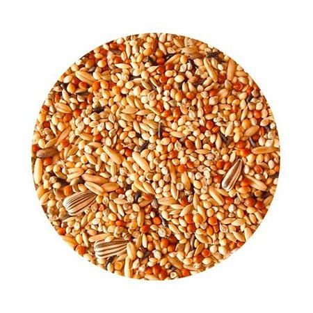 Mistura de Sementes Premium para Psitacídeos 1 Kg