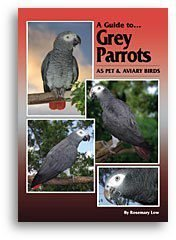 Bird Keeper A Guide to African Grey Parrots