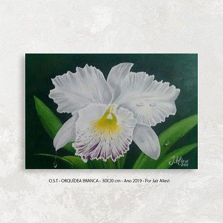 Quadro Flor Orquídea Branca - Tinta Óleo Sobre Tela 30x20cm