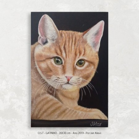Quadro Pintura Gatinho - Tinta Óleo Sobre Tela 20x30cm