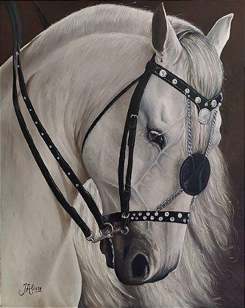 Quadro de cavalo Mangalarga Marchador - Tinta Óleo Sobre Tela 40x50cm