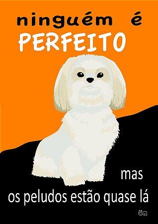 Placa Ninguém É Perfeito