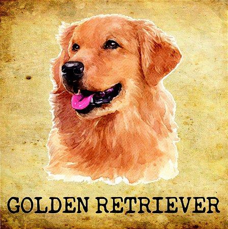 Placas de Golden Retriever - várias coleções