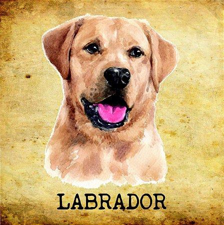 Placas de Labrador