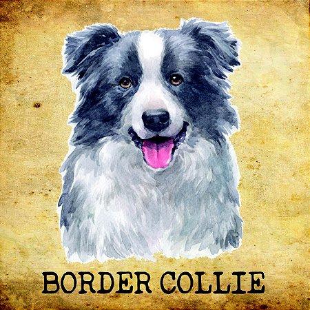 Placas de Border Collie - várias coleções