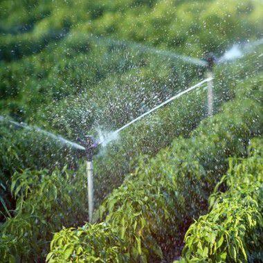 CONAMA 396 - Para Irrigação