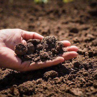 VOR CETESB Solo sem Dioxinas e Furanos
