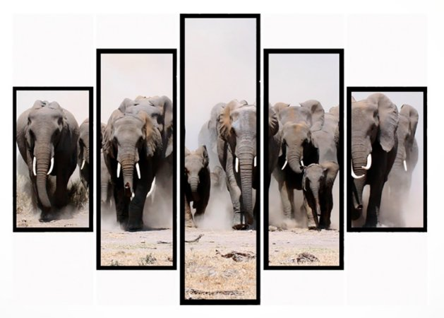 Quadro Mosaico 5 Partes  Manada de Elefante Moldura Preta Art e Cia