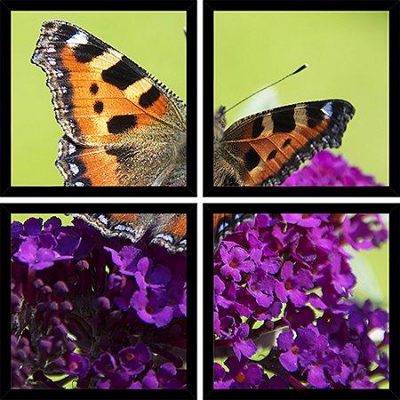 Quadro Mosaico 4 Partes Quadrado Mariposa Flor Roxa Art e Cia Preto