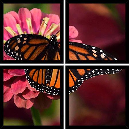 Quadro Mosaico 4 Partes Quadrado Monarch Butterfly Art e Cia Preto