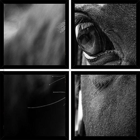 Quadro Mosaico 4 Partes Quadrado Olhar Do Cavalo Art e Cia Preto