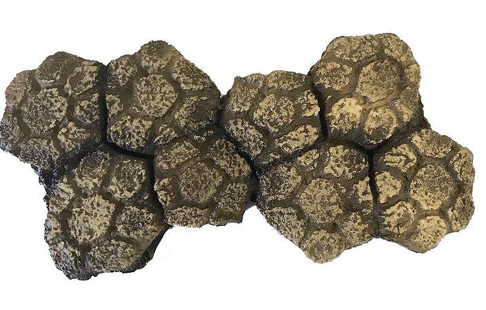 Placa osteodérmica de gliptodonte (Glyptodon reticulatus)