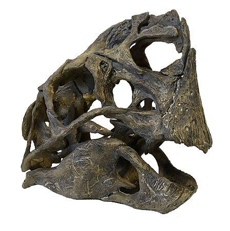 Crânio de Crânio de Citipati osmolskae