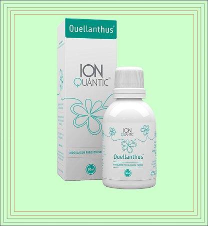 QUELLANTHUS 50ml - Ionquântic Fisioquântic