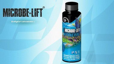 XTREME MICROBE-LIFT CONDICIONADOR