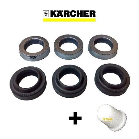 Kit Reparos Gaxetas + Anel Raspador para Karcher HD 585 + Filtro