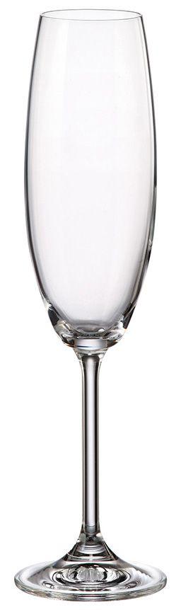 Taça Champagne Gastro 230ml (unidade)