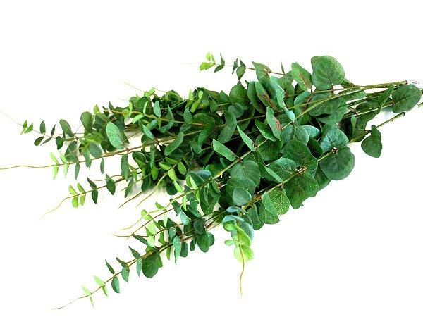 Haste de eucalipto verde