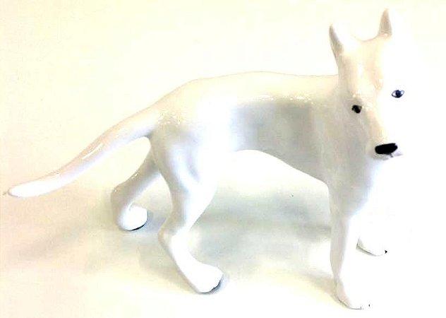 Cachorro branco doberman