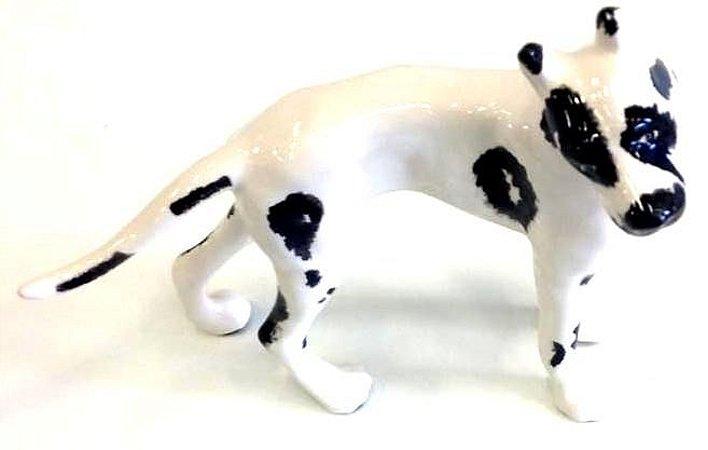 Cachorro branco e preto