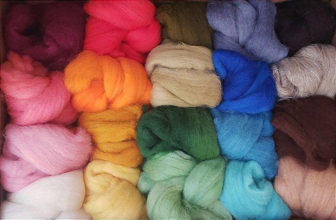 Kit de Lãs Corriedale Colorido + Enchimento - 620g