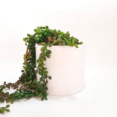 Vaso Cachepot Ceramica Branco Redondo 12cm Minimalismo