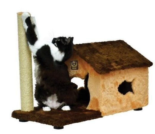 Arranhador Casa