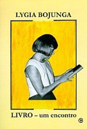 Livro: um encontro - Lygia Bojunga