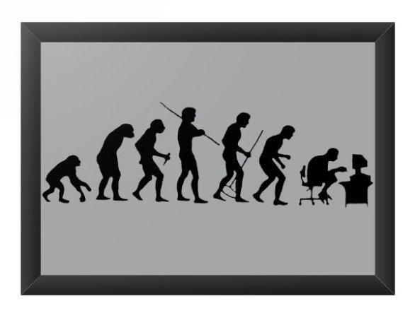 Quadro Decorativo A4 (33X24) Evolution - Loja Nerd e Geek - Presentes Criativos