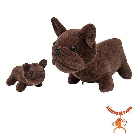 Bulldog Francês Grávida com 1 Filhote