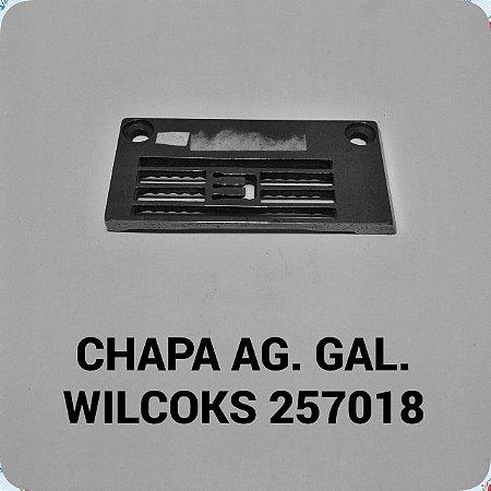 Chapa de Agulha Wilcoks 257018