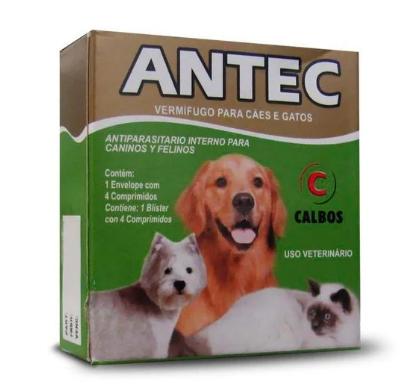 Antec  04 Comp