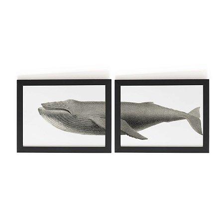 Conjunto 2 Quadros Baleia (43x33cm)