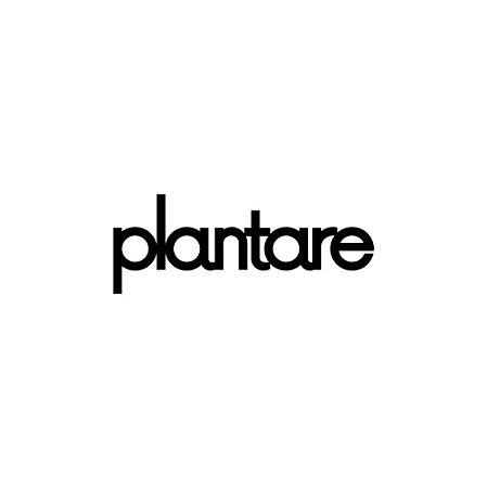 Letterting Plantare
