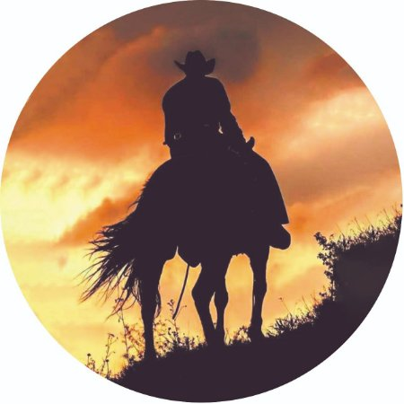 Capa Personalizada para Estepe Ecosport Crossfox Cowboy 3