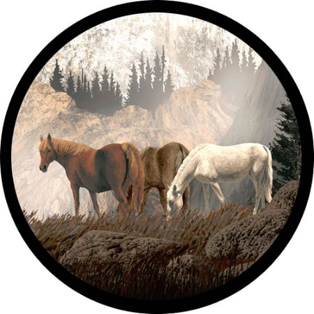 Capa Personalizada para Estepe Ecosport Crossfox Cavalos na Montanha