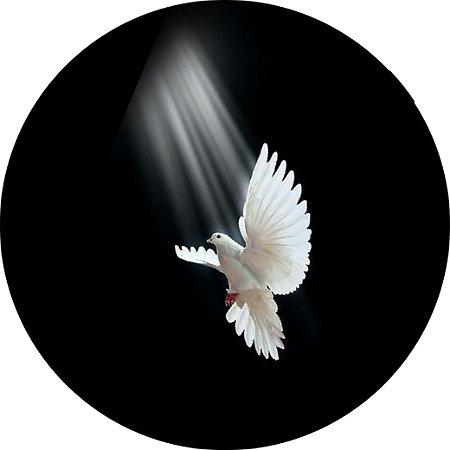 Capa Personalizada para estepe Ecosport Crossfox + Cabo + Cadeado Religioso Pomba Branca