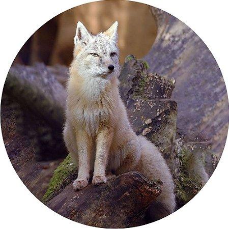 Capa para Estepe Pneu Personalizada Especial Crossfox + Cabo + Cadeado Fox Raposa 5