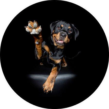 Capa para estepe Ecosport Crossfox + Cabo + Cadeado Rottweiler 2