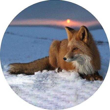 Capa para Estepe Pneu Personalizada Especial Crossfox + Cabo + Cadeado Fox Raposa 10